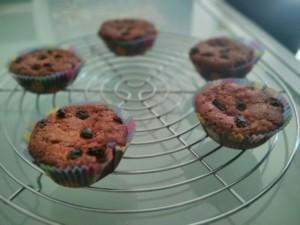 muffin_zenzero